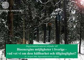 Bioenergi i Sverige